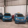 Honda-Mobilio-Jadi-Unit-Armada-Baru-Blue-Bird